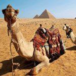 EGYPT1-1500×1001-SQUARE11_1600x1067
